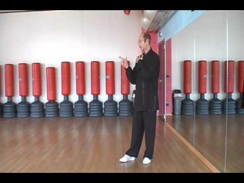 il Tai Chi Chuan è Un'illusione Ottica:lezioni On Line Di Tai Chi Chuan Del Maestro M. Morena video