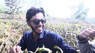 অভিনেতা ইমরানখানের সাথে মাজেদের বন্ধুত্বেরগল্প(Shooting time)Funny Vlog।।Green Bangla।Shooting time।