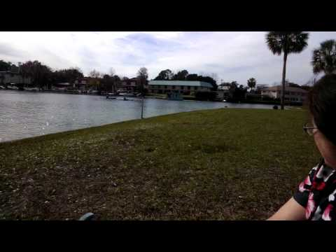 XE12 Test Video From Hunters Spring Park Overlooking Kings Bay In Crystal River FL
