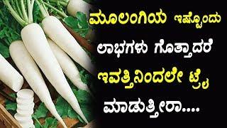 ಮೂಲಂಗಿಯ ಇಷ್ಟೊಂದು ಲಾಭಗಳು ಗೊತ್ತಾದರೆ ಇವತ್ತಿನಿಂದಲೇ ಟ್ರೈ ಮಾಡುತ್ತೀರಾ....! | Health Benefits of Radish |