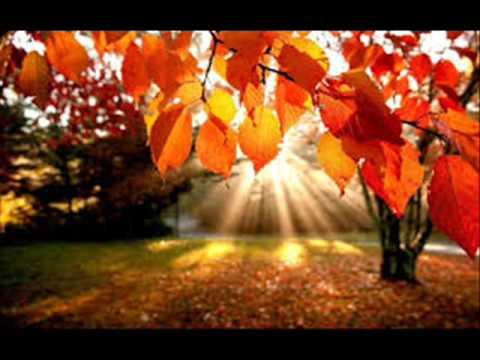 "Дебюсси Клод - Complete Piano Works Preludes II тетрадь 2. ""Мертвые листья"""