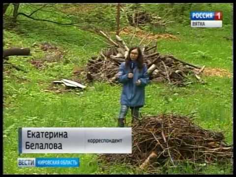 Стихийные свалки во дворах домов на улице Мира города Кирова(ГТРК Вятка)