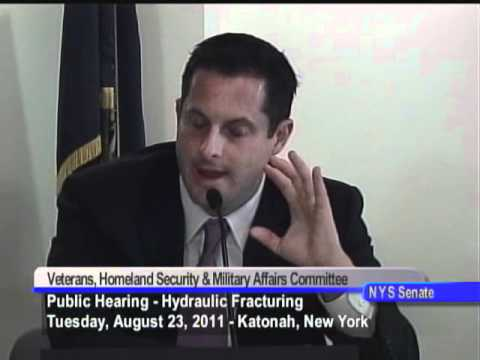 New York State Senate Public Hearing on Veterans, Homeland Security and Military Affairs 08/23/11