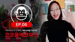 제주도여행 ep6. 코코몽에코파크(feat. 제주커머스)