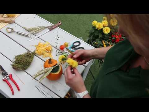 Mencke Gartencenter Kürbis-Deko selbstgemacht