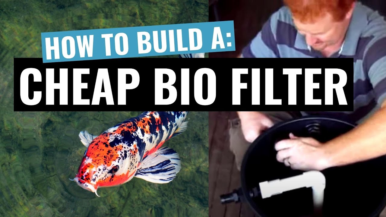 Diy home made cheap biological filter for your koi or for Fish pond water filtration system