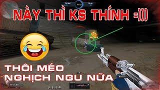 Từ Nay Xin Chừa Tội Nghịch Ngu - TK Showbiz