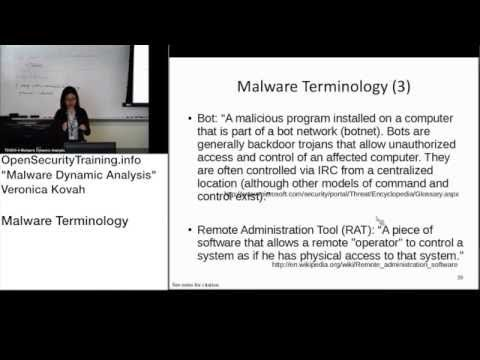 Dynamic Malware Analysis D1P11 Malware Terminology