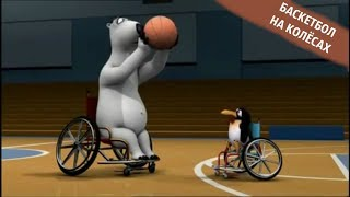 БЕРНАРД И СПОРТ - Баскетбол на колёсах