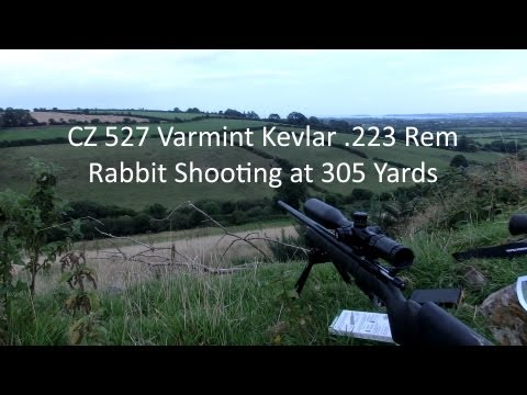 223 Rabbit Shooting at 305 Yards