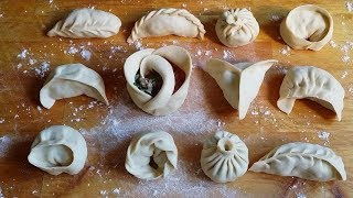 How to wrap dumplings/momos(12ways)|Easy Ways!|How to fold momos|learn to make momo|TastyTreazure
