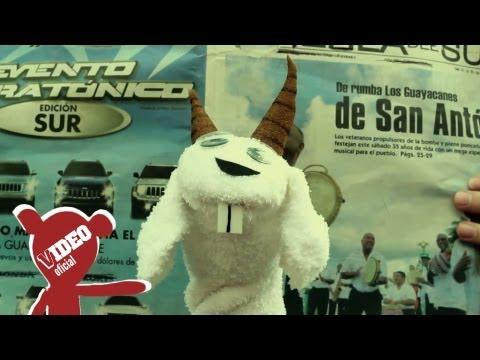 Jamsha El PutiPuerko CabroeMonte official video