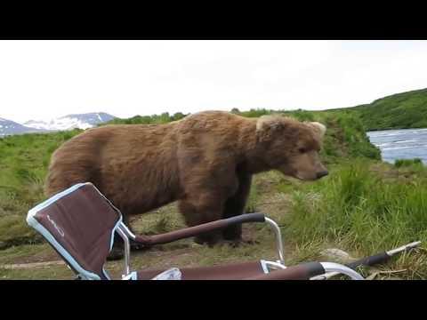 10 Шокирующих Моментов Во Время Охоты Снятые На Камеру