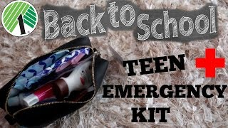 BACK TO SCHOOL EMERGENCY KIT 2019 /DOLLAR TREE ITEMS