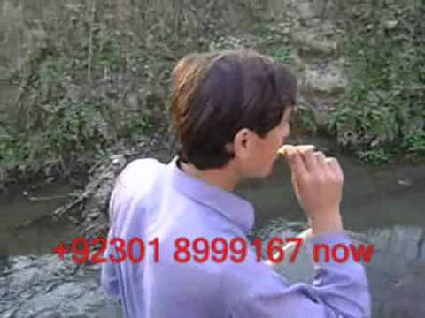 Akcent Salman Friend video