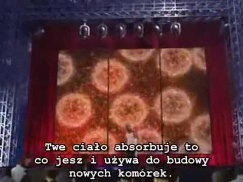 SUROWA DIETA LECZY.wmv