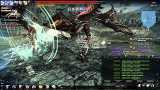 Vindictus - Siglint Fiona No Shield Solo (Sword)