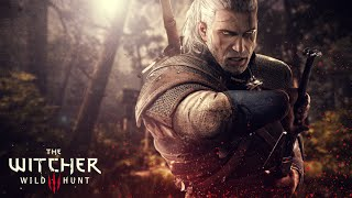The Witcher 3: Wild Hunt Game Movie (4/4) All Cutscenes Full Story 1080p HD