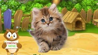Con vật và tiếng kêu | dạy bé học nói qua hình ảnh con mèo con ong | dạy trẻ thông minh sớm 1