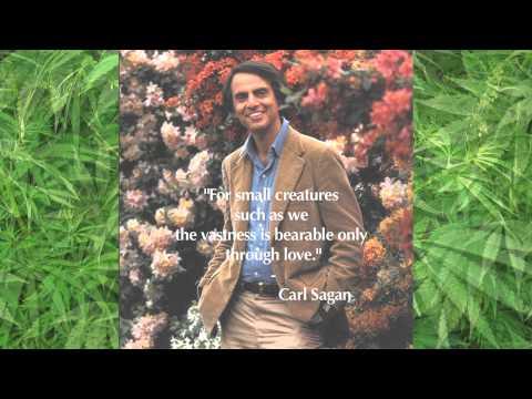David Peel - Marijuana