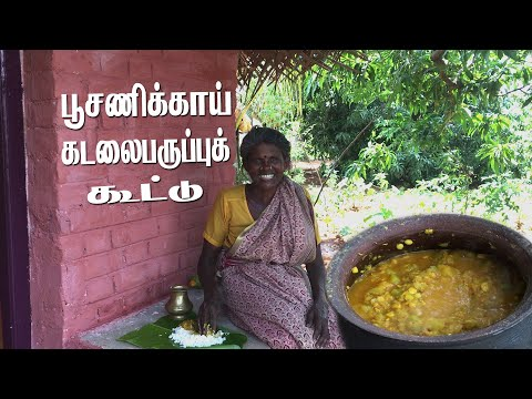 கிராமத்து சமையல் பூசணிக்காய் கடலைப்பருப்பு கூட்டு | Village Cooking POOSANIKAI KADALAI PARUPPU KOOTU