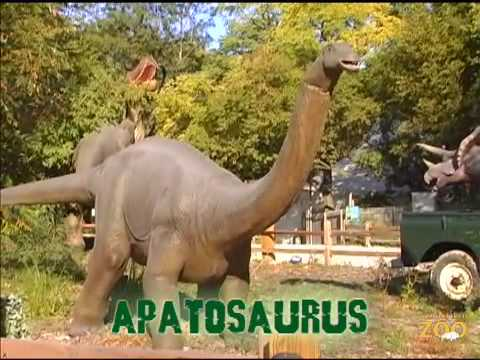 Mesozoic Idol: Apatosaurus (Week 13) Video