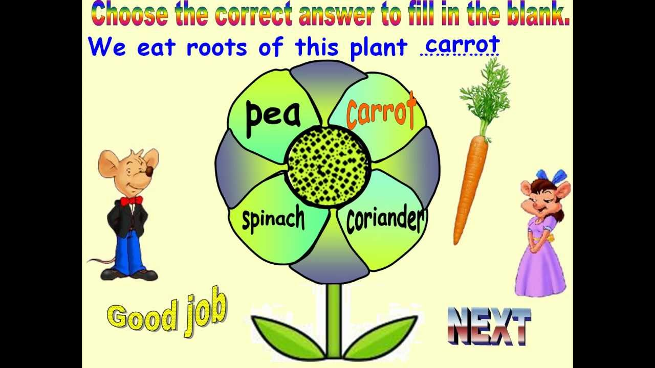 Free Worksheets plant worksheets for 2nd grade : SCIENCE FOR CLASS 1 PLANTS AROUND US - YouTube