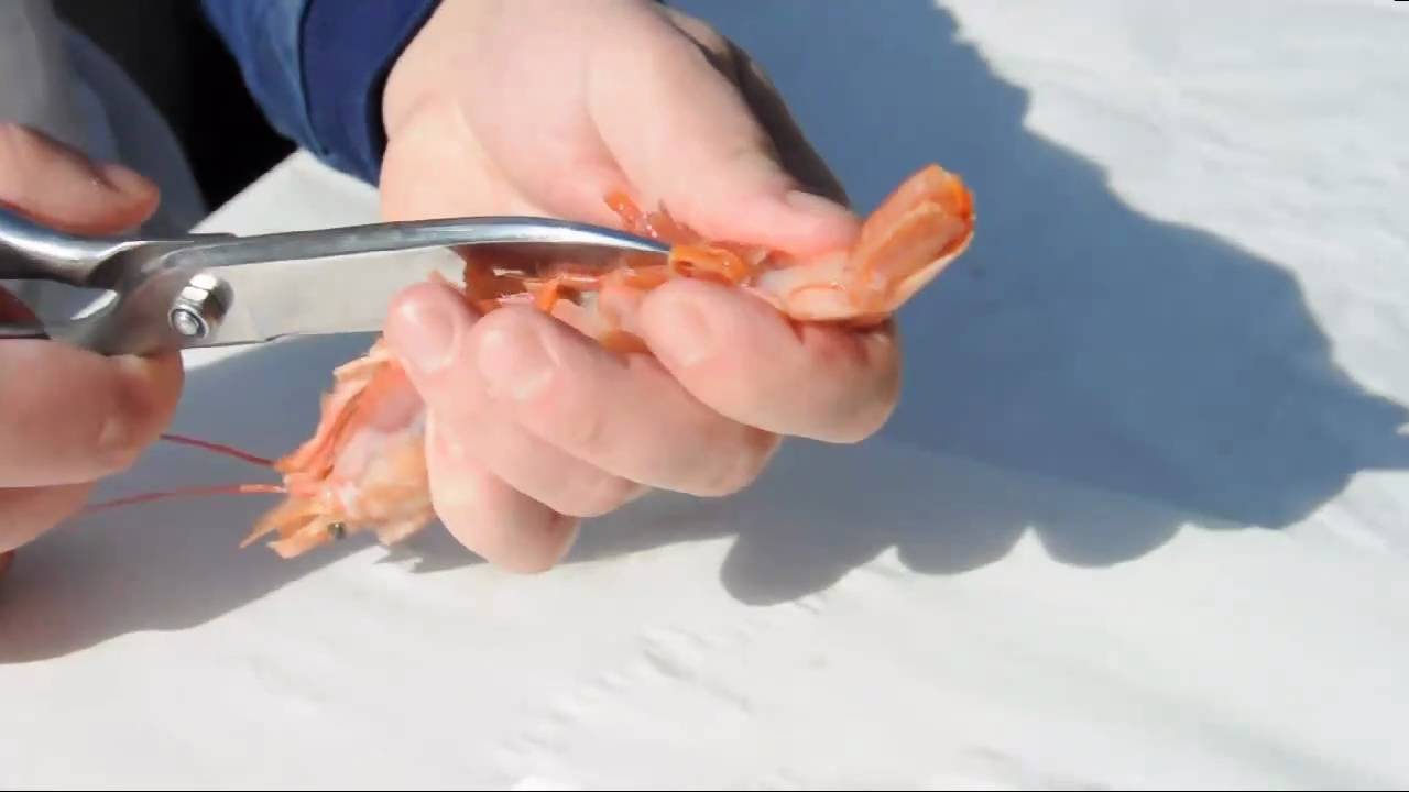 How to Clean Prawns recommend