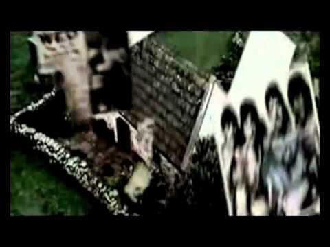 Alberto Fortis - Fragole Infinite