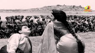Nuvvante Naakenduko Song - Antastulu Movie Songs - ANR, Krishna Kumari, Bhanumathi