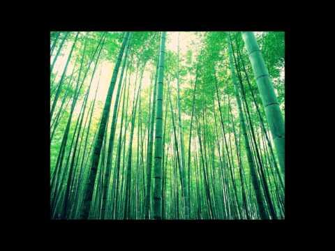 Plastic Tree - Utsusemi