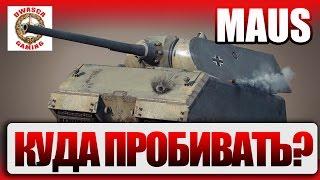 Куда пробивать Maus? Tiger P, VK 100.01P, MAUSCHEN, MAUS.