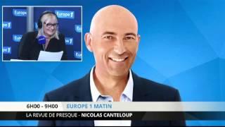 Nicolas Canteloup - Réintroduire le tigre en région parisienne