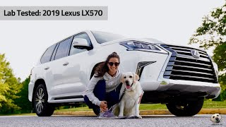 2019 Lexus LX570: Andie the Lab Review!