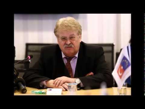 European parliament delegation discusses customs union in Ankara