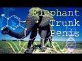 Get An Elephant Trunk Size PENIS Now! Subliminal Subconscious Hypnosis Monaural Beats Binaural Bioki