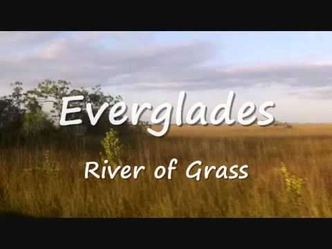River of Grass.wmv Video