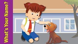 What's Your Name? Song for Kids   Kindergarten, Preschool & ESL   Fun Kids English