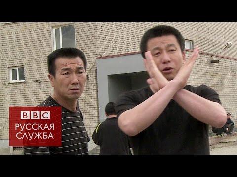 Рабы из Северной Кореи в России - BBC Russian