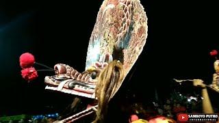 SAMBOYO PUTRO - TRESNO KEPENGGAK ITUNGAN JOWO Live BAGOL KEDIRI
