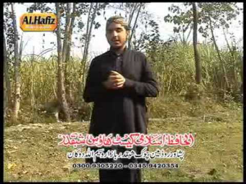 Pashto Naat Qessa Akasha R A By Suhail Mashoom video