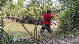 Đi câu cá gập rắn chà bá lội sông. Mới xuống cần đả dính cá | Săn bắt SÓC TRĂNG |