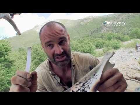 Thirty Tadpoles Make A Meal | Marooned with Ed Stafford S2E4