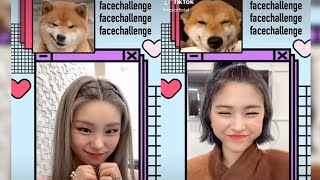 ITZY TRY FACE-CHALLENGE ON TIKTOK