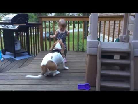 Columbo kutyája és a csöppség