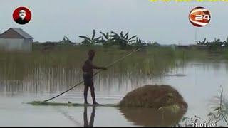 বানের জলে ক্ষতিগ্রস্ত সোয়া লাখ হেক্টর জমির ফসল- Channel 24 Youtube