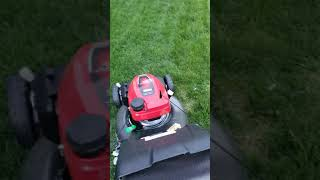 Honda HRN 216 Lawn Mower Review! Best mower!