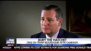 Sen. Cruz on Fox News