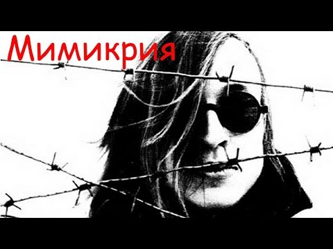 Гражданская Оборона, Егор Летов - Мимикрия