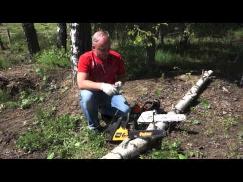 Видео как выбрать бензопилу